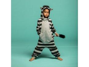 001 Zebra PLAY
